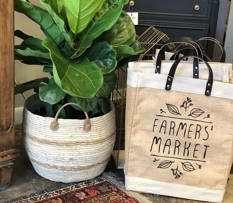 Downtown Farmers Curb Market Reopens